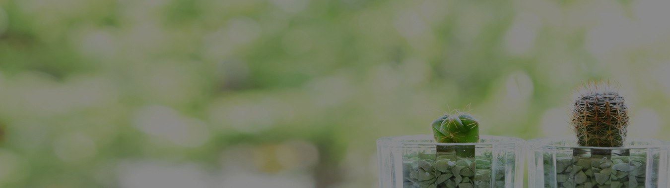 西和不動産 滋賀県大津市 グリーンパーク大平